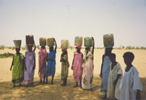 Women fetching water from well, Kordofan